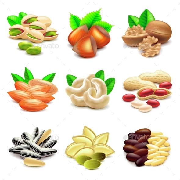 Nuts Icons Vector Set - Food Objects