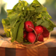 Radish With Leaves - VideoHive Item for Sale