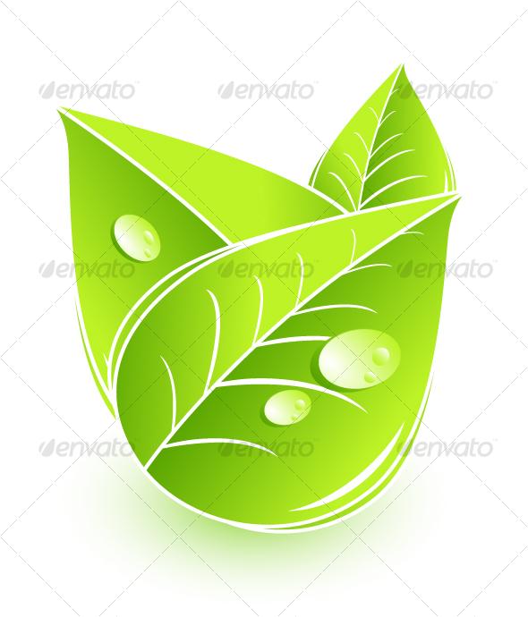 Leaves composition - Nature Conceptual
