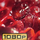 Pomegranate Fruit - VideoHive Item for Sale