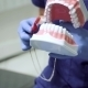Dentist Showing How To Brush The Teeth - VideoHive Item for Sale
