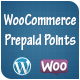WooCommerce Prepaid Points - Revolutionary Payment Method