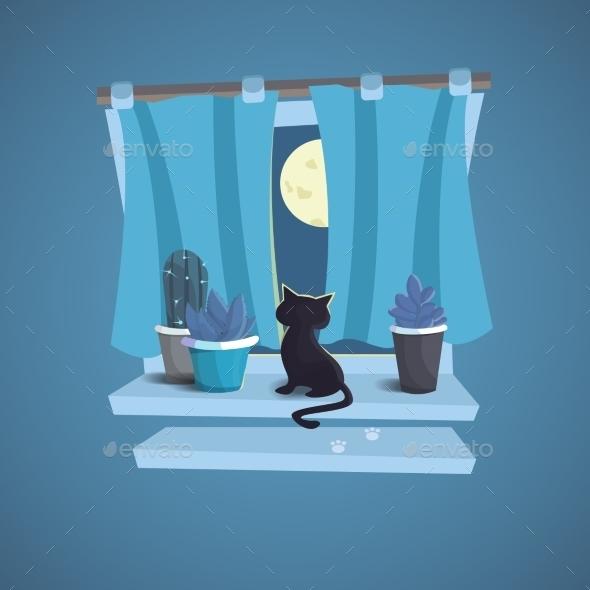 Cat Sits on a Windowsill at Night - Seasons Nature