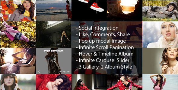 Infinite Scroll WordPress Social Photo Gallery Plugin - CodeCanyon Item for Sale
