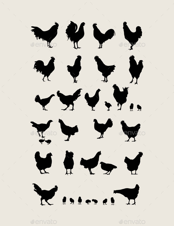 Chicken Silhouettes  - Animals Characters