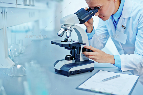 Scientist in lab - Stock Photo - Images