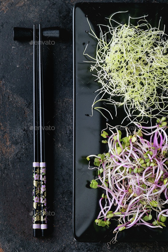 Plate of Fresh  Sprouts - Stock Photo - Images