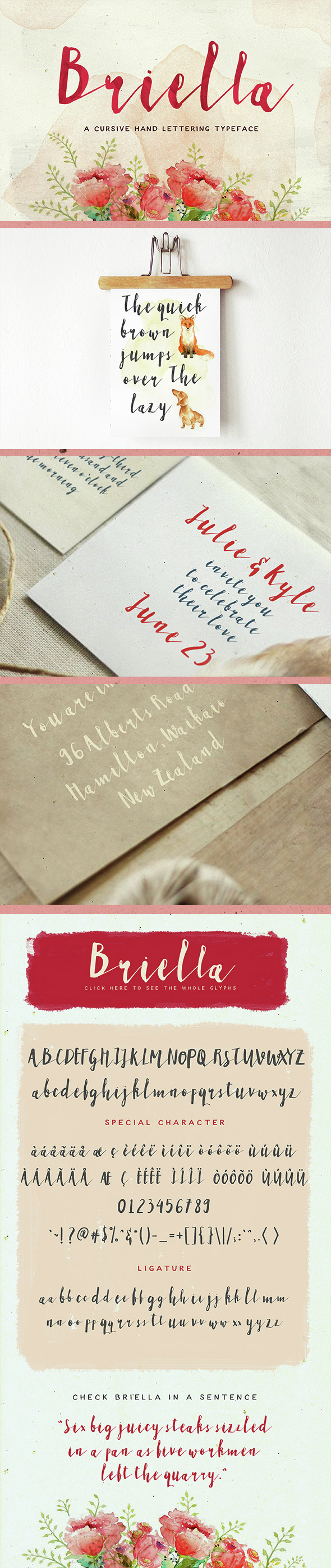 Briella - Script Fonts