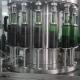 Green Bottles Motion On Vine Conveyor - VideoHive Item for Sale