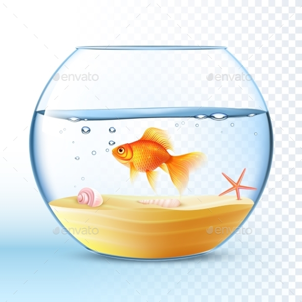 Golden Fish In Round Bowl Poster  - Miscellaneous Vectors