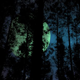 Slow Camera Drive Through Forest at Night with Big Moon and Magic Stars - VideoHive Item for Sale