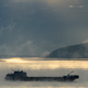 Barge In The Fog - VideoHive Item for Sale