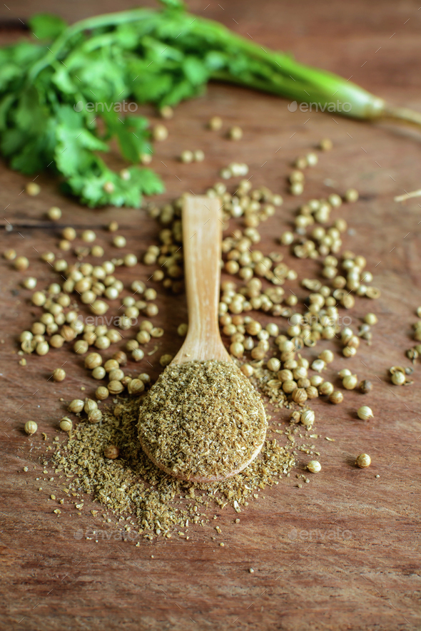 Coriander powder, Aromatic ingredients on rustic wooden table - Stock Photo - Images