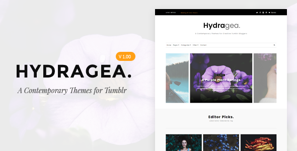 Hydragea | A Contemporary Tumblr Themes