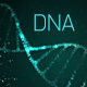 Dark Green Double Helix DNA Set - VideoHive Item for Sale