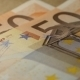 Counting Euro Bills - VideoHive Item for Sale