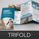 Travel Trifold Brochure InDesign Template v3 - GraphicRiver Item for Sale