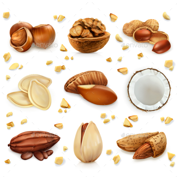 Nuts in the Shell - Food Objects