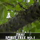 Thai Spirit Tree No.1 - VideoHive Item for Sale