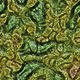 Alien Organic Texture - 3DOcean Item for Sale