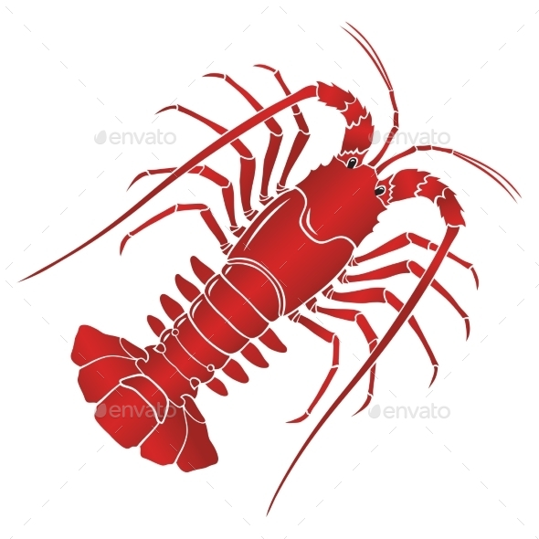 Boiled Spiny or Rock Lobster - Food Objects