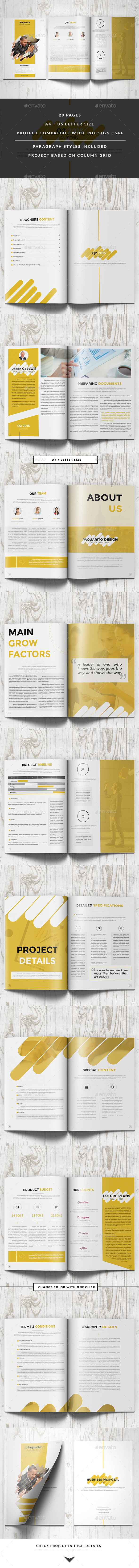 Paquarito Business Proposal - Informational Brochures