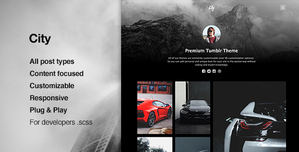 City | High Quality Portfolio Theme