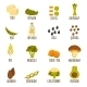 Vegan Protein Icons - GraphicRiver Item for Sale