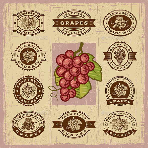 Vintage Grapes Stamps Set - Decorative Symbols Decorative