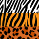 20 Animal Print Seamless Vector Patterns - GraphicRiver Item for Sale