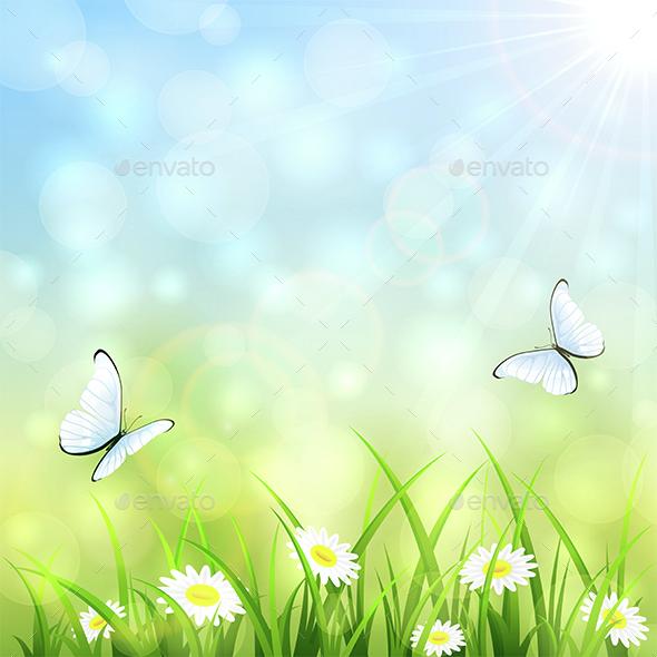 Summer Natural Background - Seasons Nature