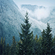 Snowfall On Trees Near Misty Mountains - VideoHive Item for Sale