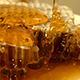 Honey and Honeycomb - VideoHive Item for Sale