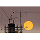 Tower Cranes - GraphicRiver Item for Sale