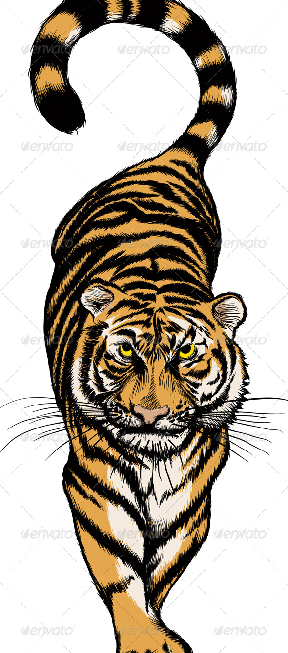 Crouching Tiger - Animals Characters