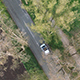 Aerial Footage of a Car Driving on a Tree Avenue - VideoHive Item for Sale