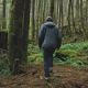 Man Walking Through Forest - VideoHive Item for Sale