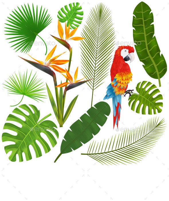 Tropical Leaves, Flowers and Macaw Vector - Flowers & Plants Nature