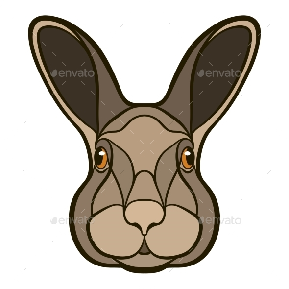 Head of a Rabbit - Animals Characters