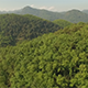 Flyover Forest Covered Mountains - VideoHive Item for Sale