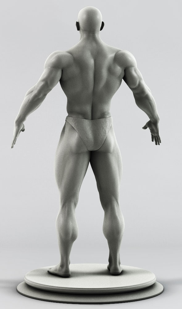 muscular man zbrush sculpt by thewatcher 3docean