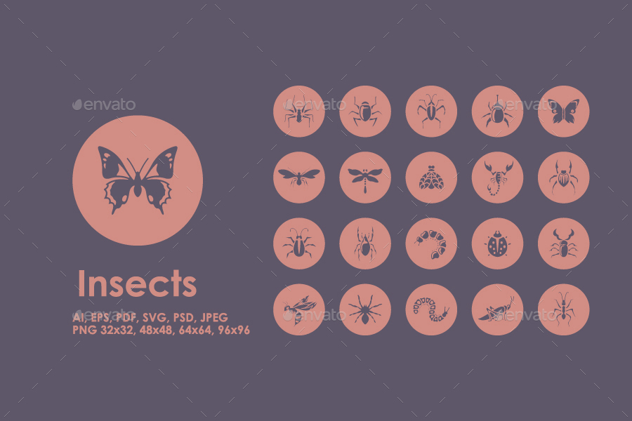 20 Insects icons