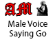 Male Voice Saying Go