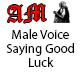 Male Voice Saying Good Luck
