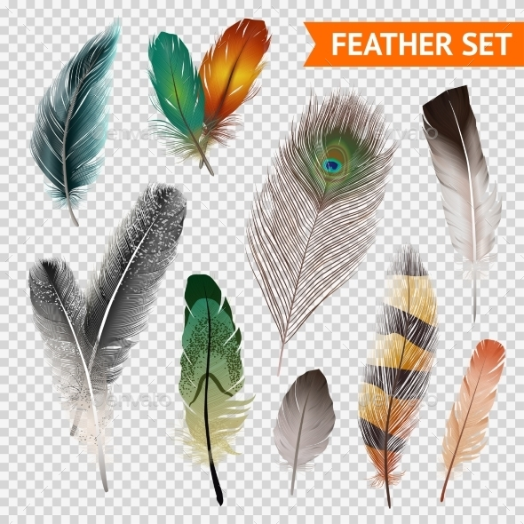 Feathers Realistic Set - Organic Objects Objects
