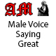 Male Voice Saying Great