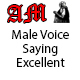 Male Voice Saying Excellent