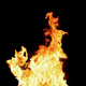 Fire flames - isolated on black background - PhotoDune Item for Sale