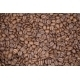 Modern Close Up Coffee Beans Background - GraphicRiver Item for Sale