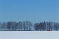 Winter landscape with a red bus - PhotoDune Item for Sale